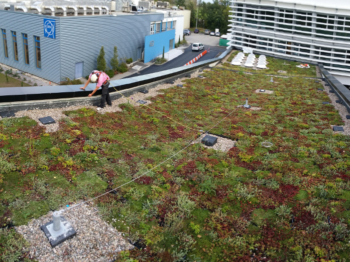Sécurité toiture végétalisée